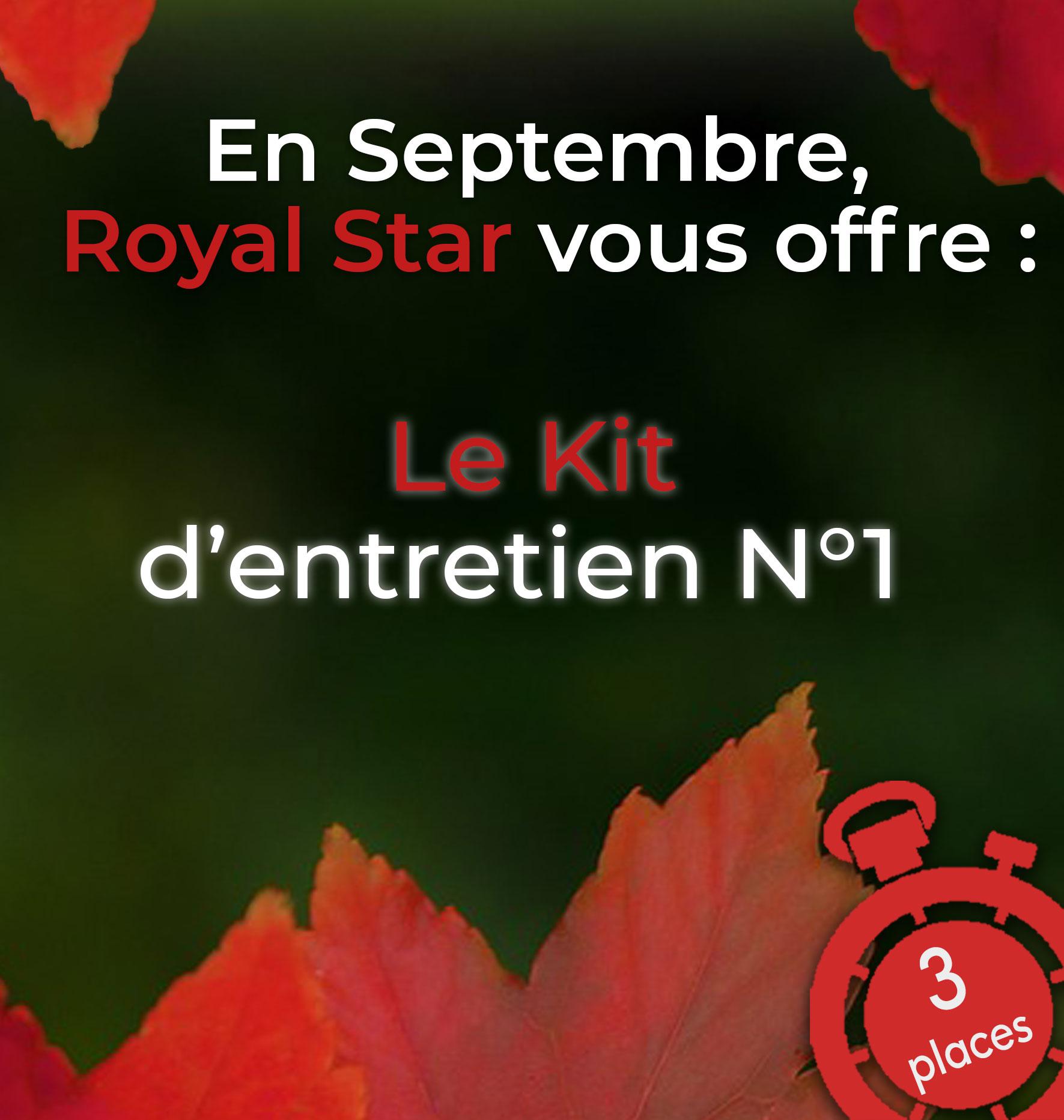 promo royalstar